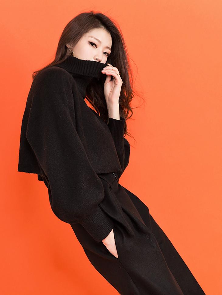 E1866 迭层高领针织上衣 (无袖组合) (第6次进货)